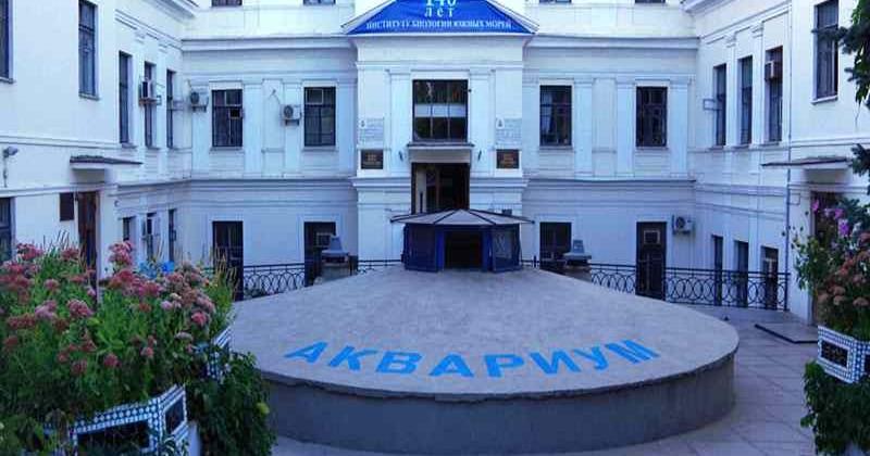 Sevastopolskij-akvarium-muzej-photo1004