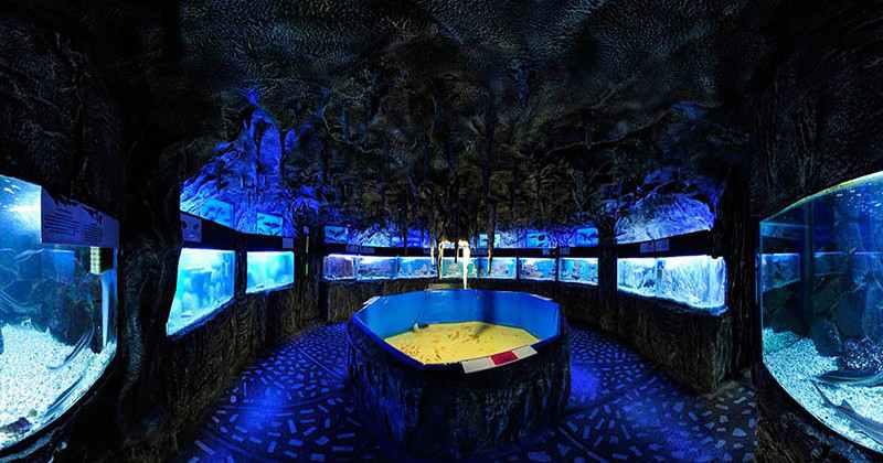 Alushtinskiy-akvarium-photo4