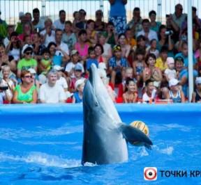 Delfinarij-nemo-v-feodosii-photo1001