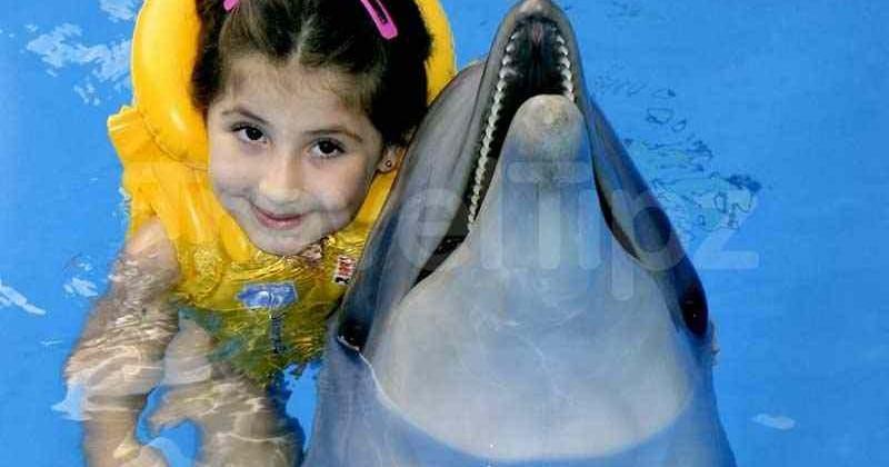 Delfinarij-akvarel-photo1001